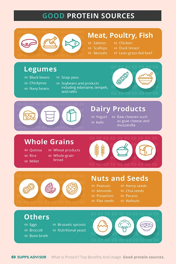 Good protein sources infographics
